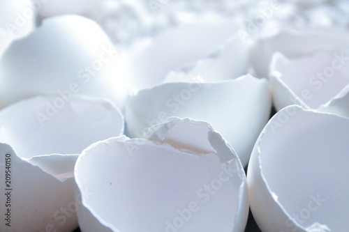 Eggshell of white color close-up. Close-up. Background. Texture. Canvas Print