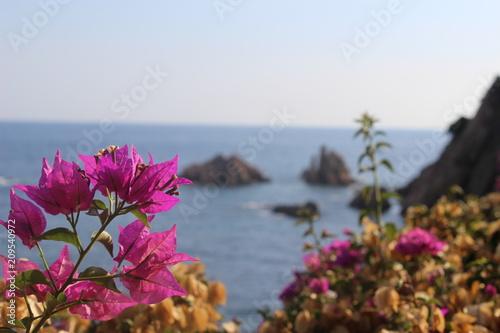 Fototapety, obrazy: Méditerrané