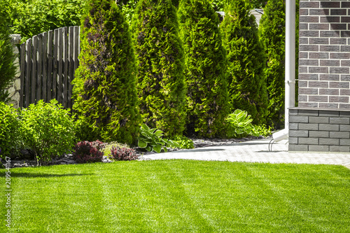 Photo sur Aluminium Jardin Beautiful evenly trimmed lawn in the backyard of a private house.