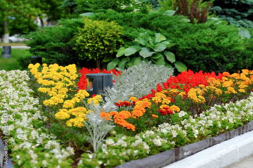 Scenic View Of Colourful Flowerbeds And A Winding Grass Lawn