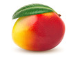 canvas print picture - mango isolated on white background, clipping path, full depth of field