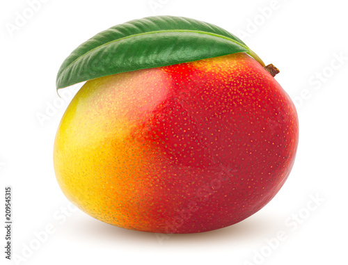 Photo mango isolated on white background, clipping path, full depth of field