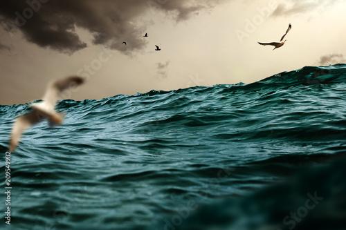 Fotografie, Obraz  Stürmisches Meer und Möwen
