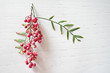 Fresh pink peppercorns with leaves