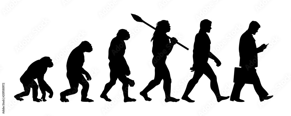 Fototapeta Theory of evolution of man silhouette