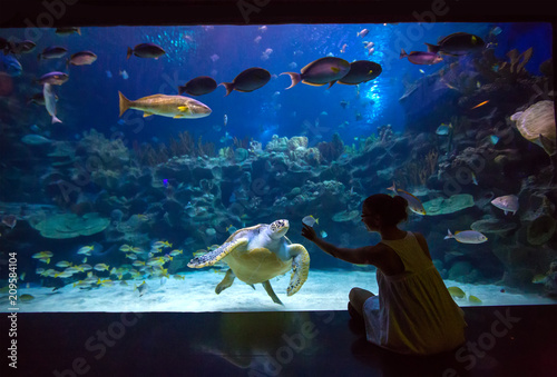 Woman in the oceanarium plays with the turtle