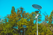Lantern With Solar Cell In A Green Park