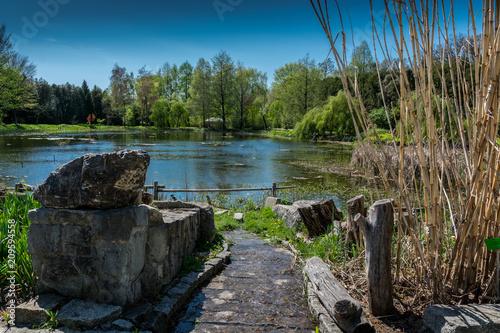Fotografia  Arboretum w Bolestraszycach
