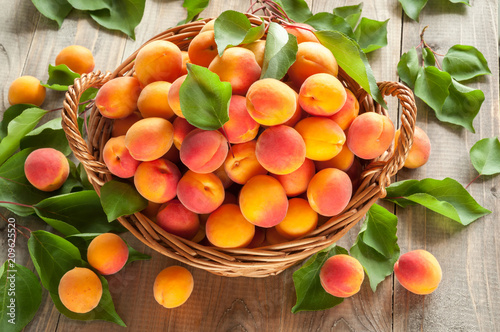 Photo Many freshly picked ripe apricots with leaves in a basket on a wooden background