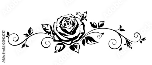 Vector horizontal black and white vignette with a rose. Wallpaper Mural