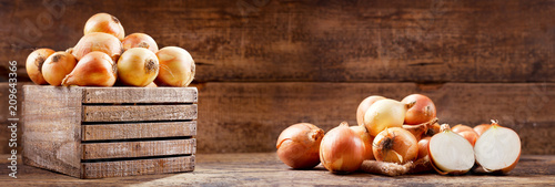 fresh onions in a wooden box Canvas Print