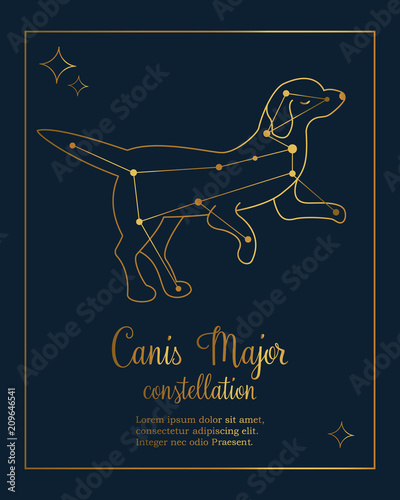 The constellation Canis Major star in the night sky Wallpaper Mural