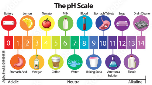 An Education Poster of pH Scale Wallpaper Mural