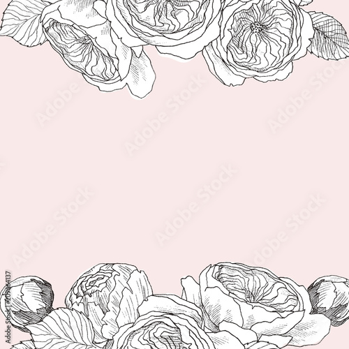 Garden Tender English Roses Frame Vintage Botanical Hand Drawn