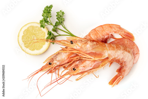Fotografía  Overhead photo of raw shrimps on white, with parsley and a lemon slice, with cop