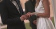 Bride and groom exchanging wedding rings and holding hands