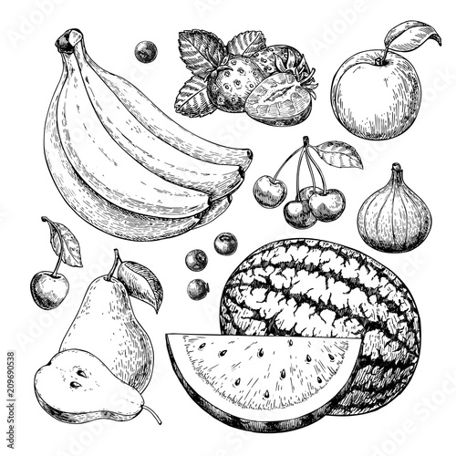 Fotografie, Obraz Fruit and berry vector drawing set. Hand drawn summer food