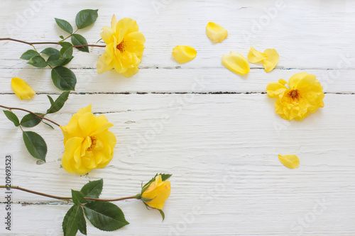 Deurstickers Narcis yellow roses on white wooden background