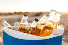Close Up Of Beer Bottles Cooling In An Icebox