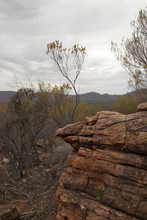 Wilpena Pound South Australia,...