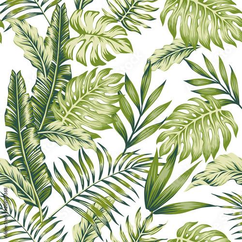 Fototapeta zielone liście