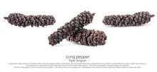 Long Pepper (Piper Longum) Iso...