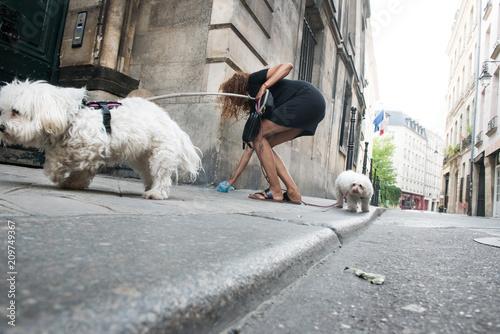 Photo la parisienne promène son chien