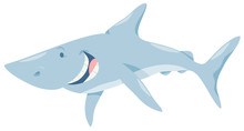 Cartoon Shark Fish Animal Char...