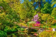 Japanese Garden Inside Of The Powerscourt Estate In Ireland