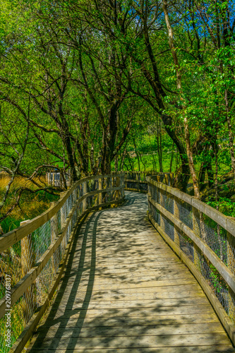 Foto op Canvas Weg in bos View of a tourist path surrounding the lower lake in Glendalough, Ireland