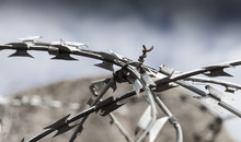 Details Of Some Barbed Wire Pr...