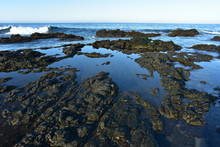 Rocky Pacific Coast Tidal Pool...