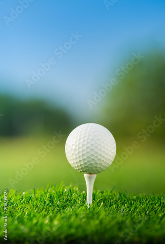close up the golf ball on tee pegs ready to play in the green background Wall mural