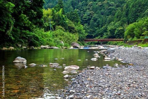 Fototapeten Wald 山奥の清らかな水の流れ