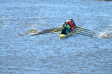 A Team Of Rowers In A Sports Boat.