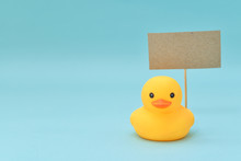 Feedback Concept, Rubber Ducks Are Holding Blank Signboard