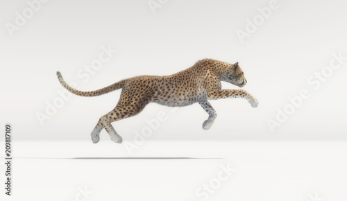 A beautiful cheetah running on white background Poster Mural XXL