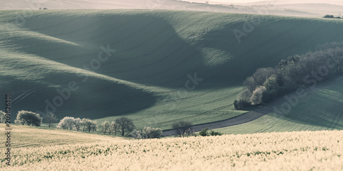 Staande foto Beige Vintage agricultural spring landscape