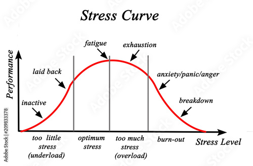 Stress and Performance Curve. Canvas-taulu