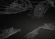 Collection Of Cobweb, Isolated...