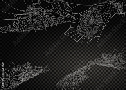 Collection of Cobweb, isolated on black, transparent background. Canvas-taulu