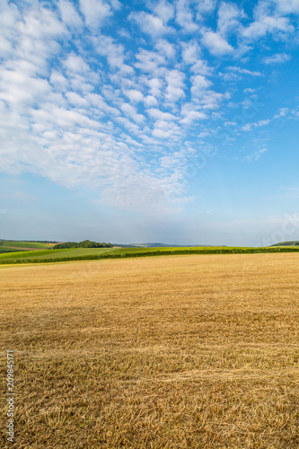 Foto op Plexiglas Blauwe hemel A Sussex farm landscape during summer