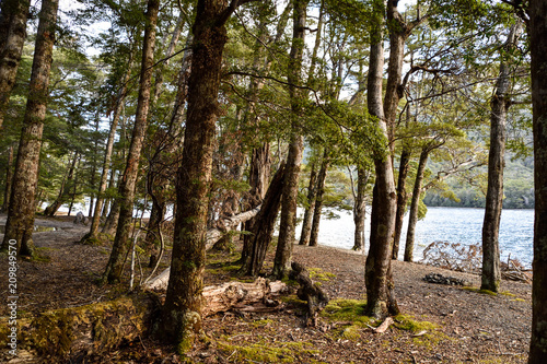 Fotobehang Oceanië Southland, NEW ZEALAND - May 3, 2016: North Mavora Lake,Fiordland National Park, New Zealand.