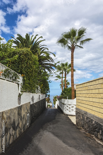 Tuinposter Canarische Eilanden Paved path leading to the ocean (Los Gigantos, Tenerife, Spain)