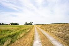 Ostsee Genießen Auf Dem Darß