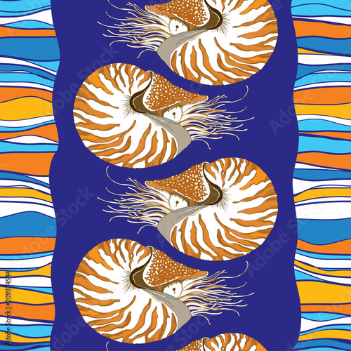 Fototapeta  Vector seamless pattern with Nautilus Pompilius or chambered nautilus in ornate shell on the blue striped background