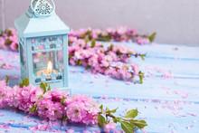 Pink  Sakura Flowers  And Deco...
