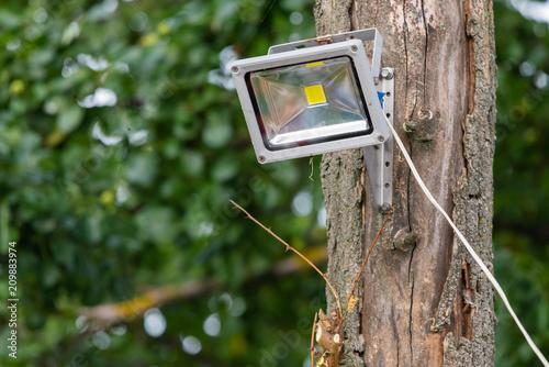 Foto op Canvas Licht, schaduw Gray diod spotlight on tree. Lighting equipment
