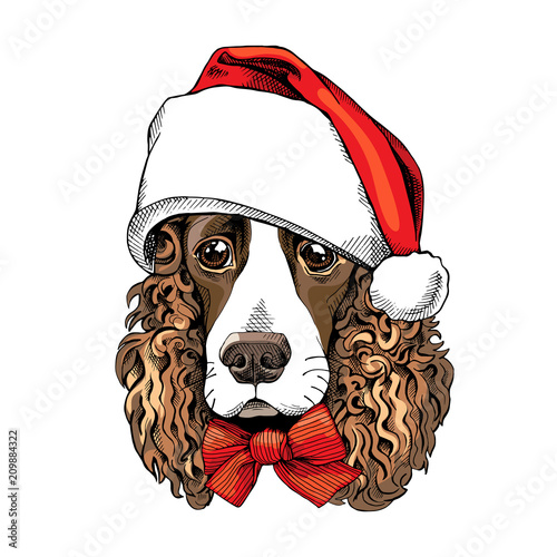 Portrait of a Spaniel dog in a Santa's hat and with bow Wallpaper Mural