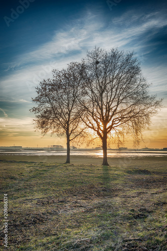 Dramatically colored rural landscape with two leafless trees silhouetted against Canvas-taulu